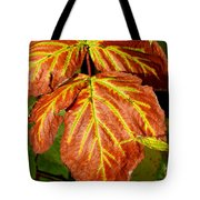 Colors And Veins Tote Bag