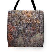 Colors Galore Tote Bag