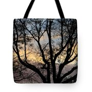 Colours Of The Dusk Tote Bag