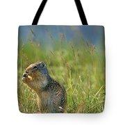 Columbia Ground Squirrel Feeding Tote Bag