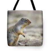 Columbian Ground Squirrel, Banff Tote Bag