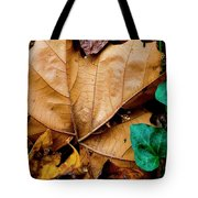 Coming And Going Tote Bag