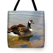 Coming On Shore Tote Bag