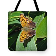 Comma Anglewing Butterfly - Polygonia C-album Tote Bag
