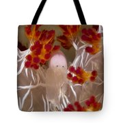 Commensal Shrimp On Soft Coral In Raja Tote Bag