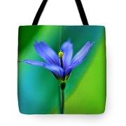 Common Blue Eyed Grass Sisyrinchium Tote Bag