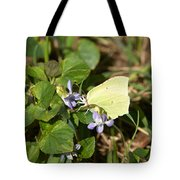Common Brimstone Tote Bag