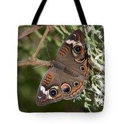 Common Buckeye Butterfly Din182 Tote Bag
