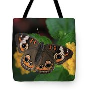 Common Buckeye Tote Bag