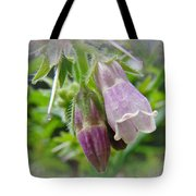 Common Comfrey - Symphytum Officinale Tote Bag