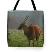Common Eland Tote Bag