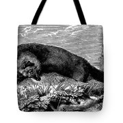 Common Fox Tote Bag