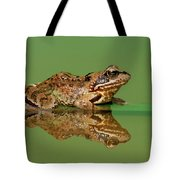 Common Frog Rana Temporaria Tote Bag
