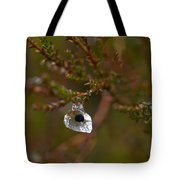 Common Frog Wrong Place Tote Bag