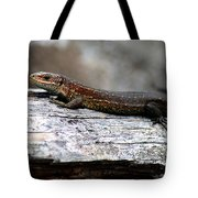 Common Lizard Tote Bag