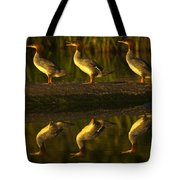 Common Mergansers On Rock Reflecting Tote Bag