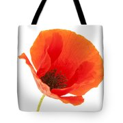 Common Poppy Flower Tote Bag