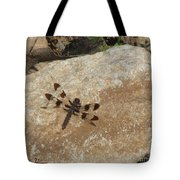Common Whitetail Dragonfly Tote Bag
