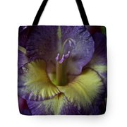 Complimentary Colors Tote Bag