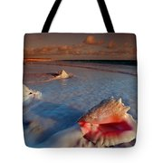 Conch Shell On Beach Tote Bag