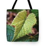 Concord Grape Plant Tote Bag by Science Source