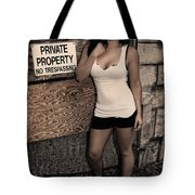 Concrete Velvet 9 Tote Bag by Donna Blackhall