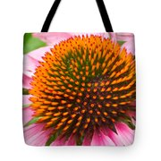 Cone Flower 7 Tote Bag