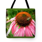 Cone Flower And Guest Tote Bag