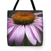 Coneflower Visitor Tote Bag