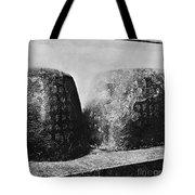 Confucian Writings Tote Bag