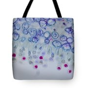 Conidia On Host Tote Bag