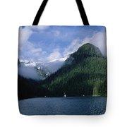 Conifer-covered Coastline Of Warm Tote Bag by Konrad Wothe