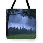 Coniferous Trees Early In The Morning Tote Bag