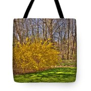 Cool Day Of Spring Tote Bag