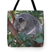 Cooladi Tote Bag