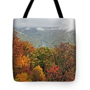 Cooper's Rock West Virginia Tote Bag