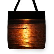 Coots In The Sunset Tote Bag