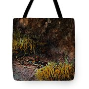 Copper And Gold Tote Bag