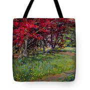 Copper Beeches New Timber Sussex Tote Bag