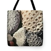 Coral Cobbles On Beach Of Bonaire Tote Bag