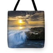 Coral Cove Tote Bag