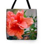 Coral Hibiscus Tote Bag