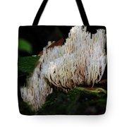 Coral Mushroom 2 Tote Bag