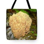 Coral Mushroom Tote Bag