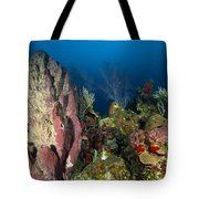 Coral Reef And Sponges, Belize Tote Bag