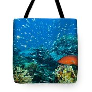 Coral Reef In Thailand Tote Bag