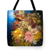 Coral Reef Seascape, Australia Tote Bag