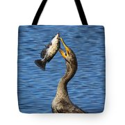 Cormorant Catches Catfish Tote Bag