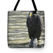 Cormorant Portrait In Shallow Water Tote Bag