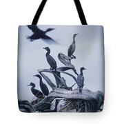 Cormorants Fly Above Driftwood, Grey Tote Bag by Leanna Rathkelly